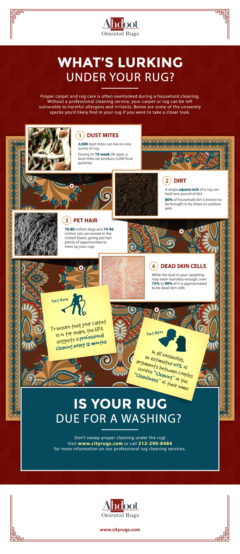 city-rugs_infographic_underrug