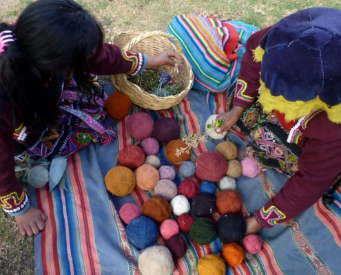 Dyed wool is gathered prior to creating a rug or textile.