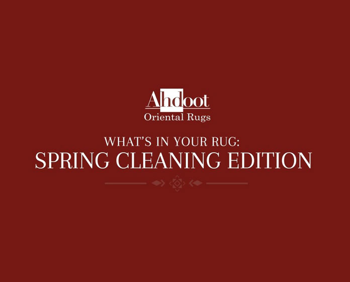 Rug Spring Cleaning